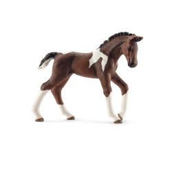 HORSE CLUB - TRAKEHNER FOAL (5)