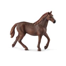 HORSE CLUB - ENGLISH THOROUGHBRED MARE (5)