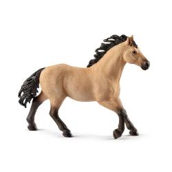 HORSE CLUB - QUARTER HORSE STALLION (5)